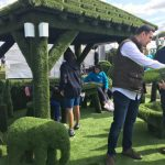 artificial grass display at Easigrass display royal county Berkshire show award