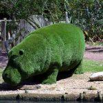 Artificial grass hippo