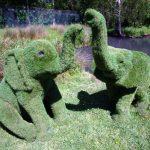 Artificial grass elephants
