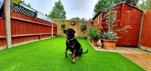 Domestic artificial grass installation - Kensington back garden