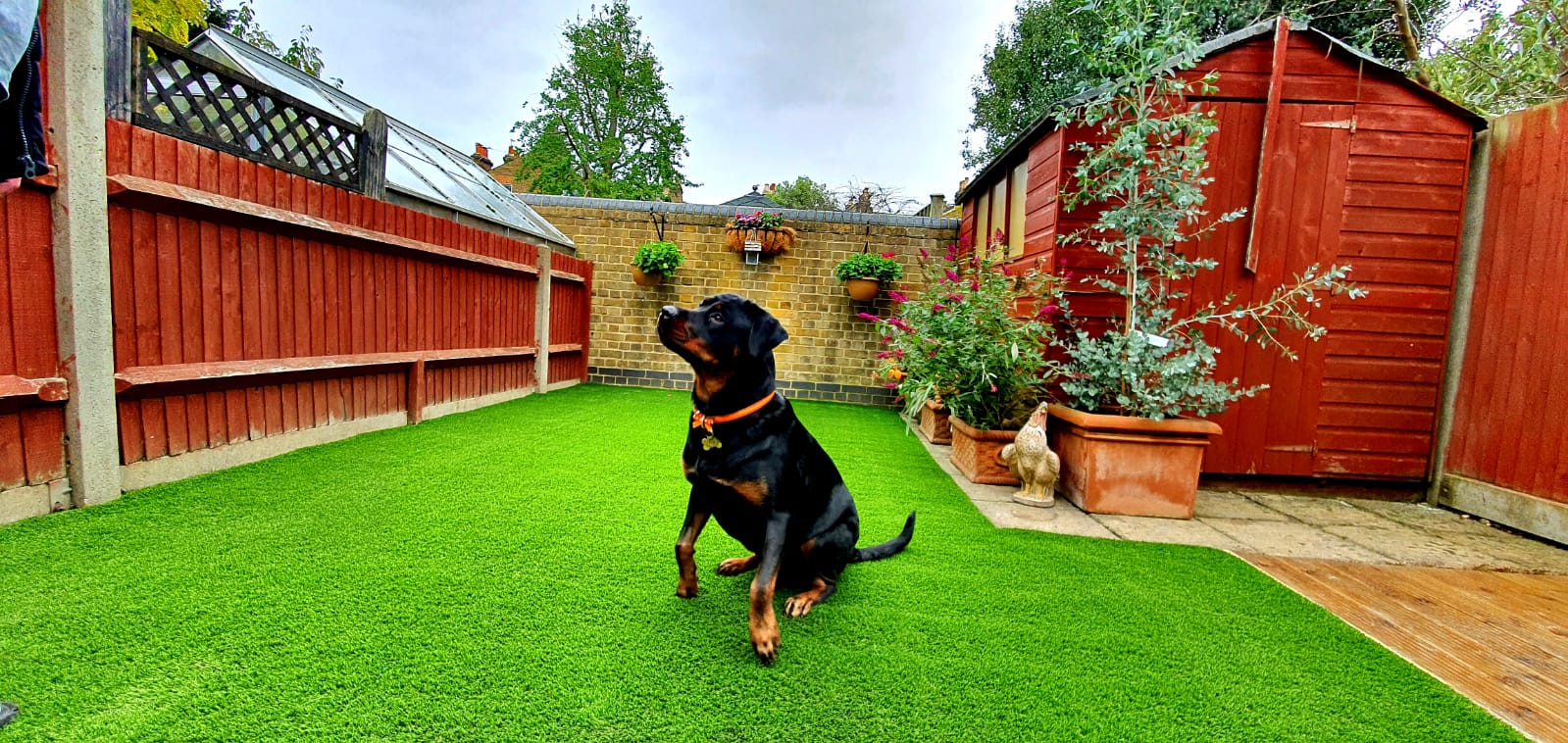 Domestic artificial grass installation - Kensington back garden