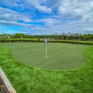 home artificial grass golf course