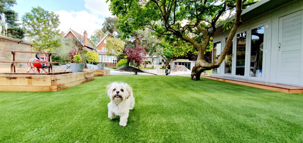 the process of buying artificial grass